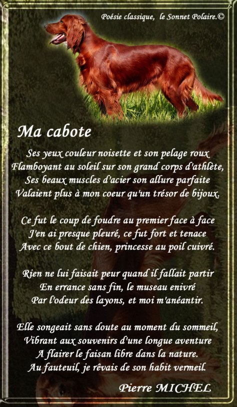 119_SONNET-POLAIRE_Ma-Cabote___eee