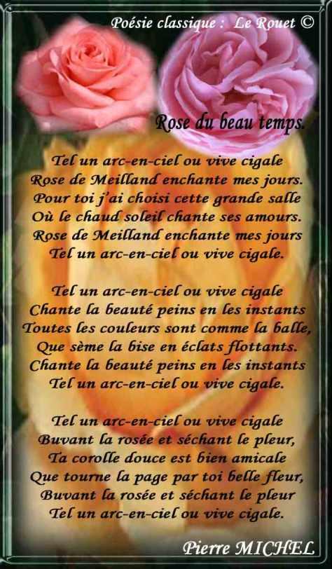 124_ROUET_Rose-du-beau-temps
