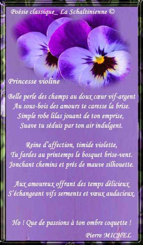 Cadre-violett