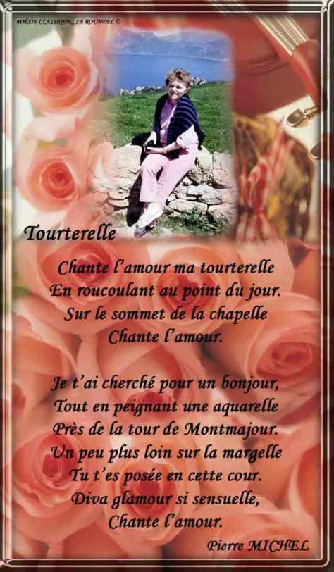 156_LE ROUNDEL_Tourterelle_____