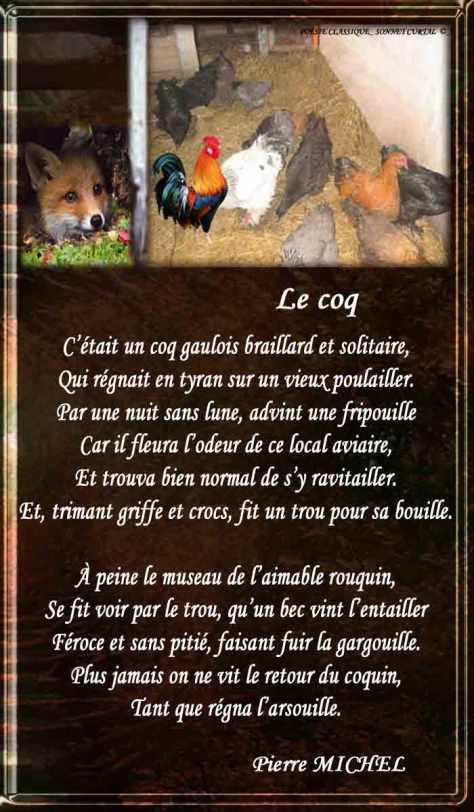 158_SONNET CURTAL_ Le Coq_____