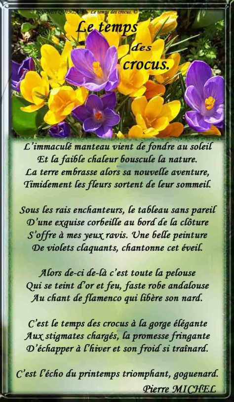 190_SONNET-QUINZAIN_Le-temps-des-crocus